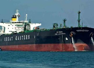 Great Eastern Shipping is steadily diversifying its fleet