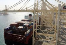 UAE container volume decreases as DP World achieves global growth
