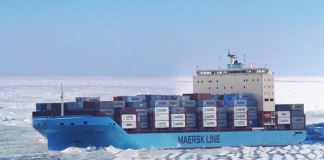DP World plans to operate ports serving vessels transiting the northern sea route