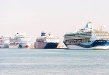 Best year yet for Dubai's cruise business