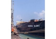 Adani Ports strengthens network with Krishnapatnam acquisition