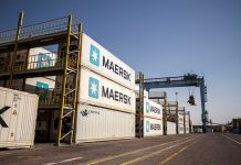 Maersk offers logistics support for Indian grape exports