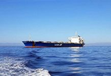 Safeen to diversify into bulk transshipment