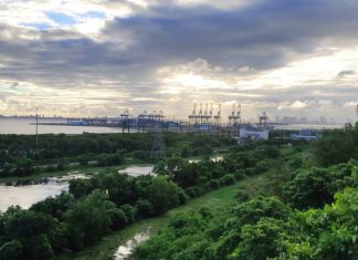 JNPT is the biggest container handling port in India accounting for around 52% of the total containerised cargo volume (Photo Ramanad Jadhav)