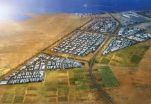 Kizad ammonia production deal highlights green priorities